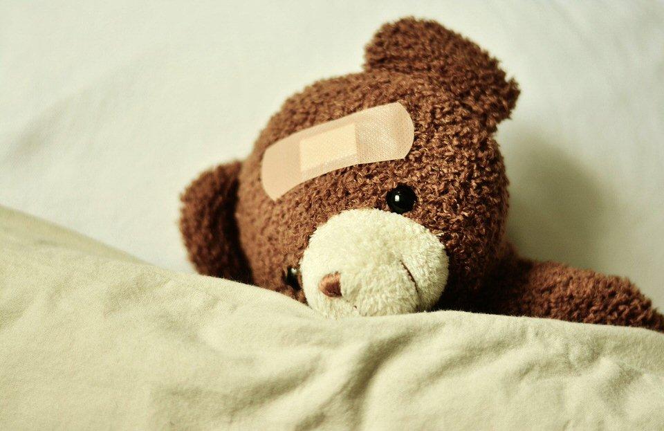 shun's article picture - teddy ill
