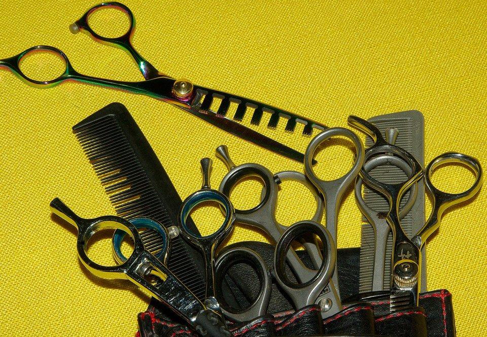 shun's article picture -  Scissor