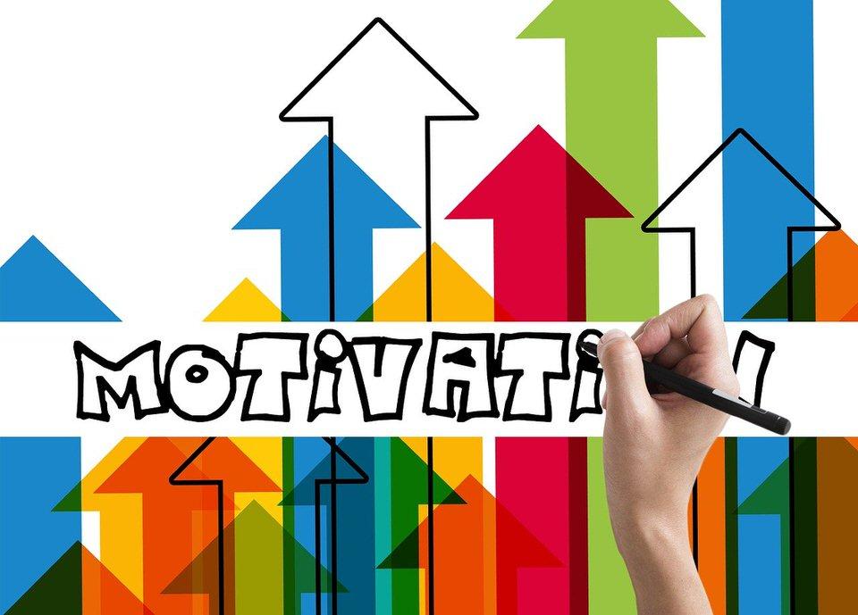shun's article picture - motivate chart