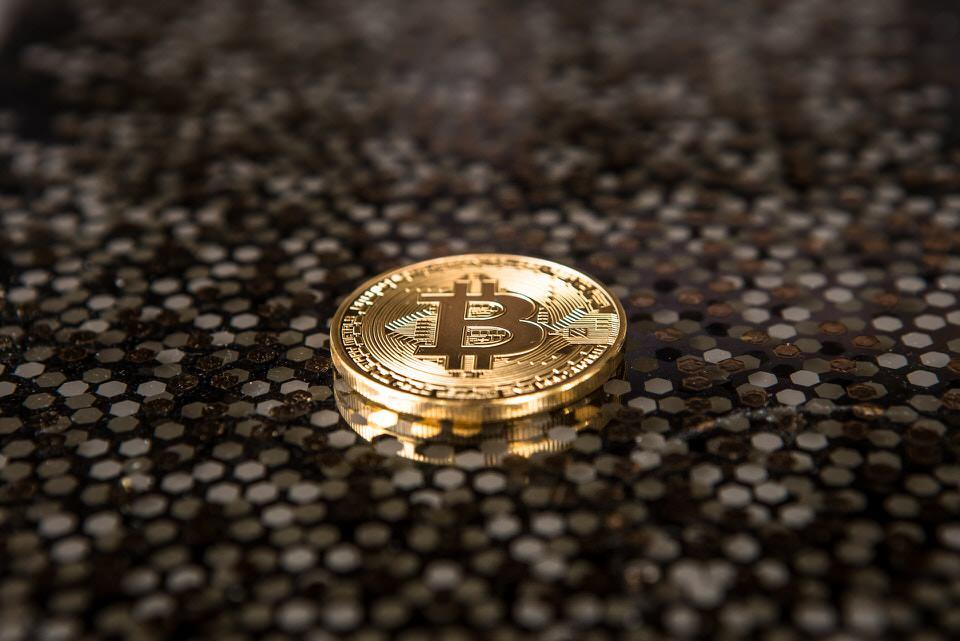 shun's article picture - BTC coins