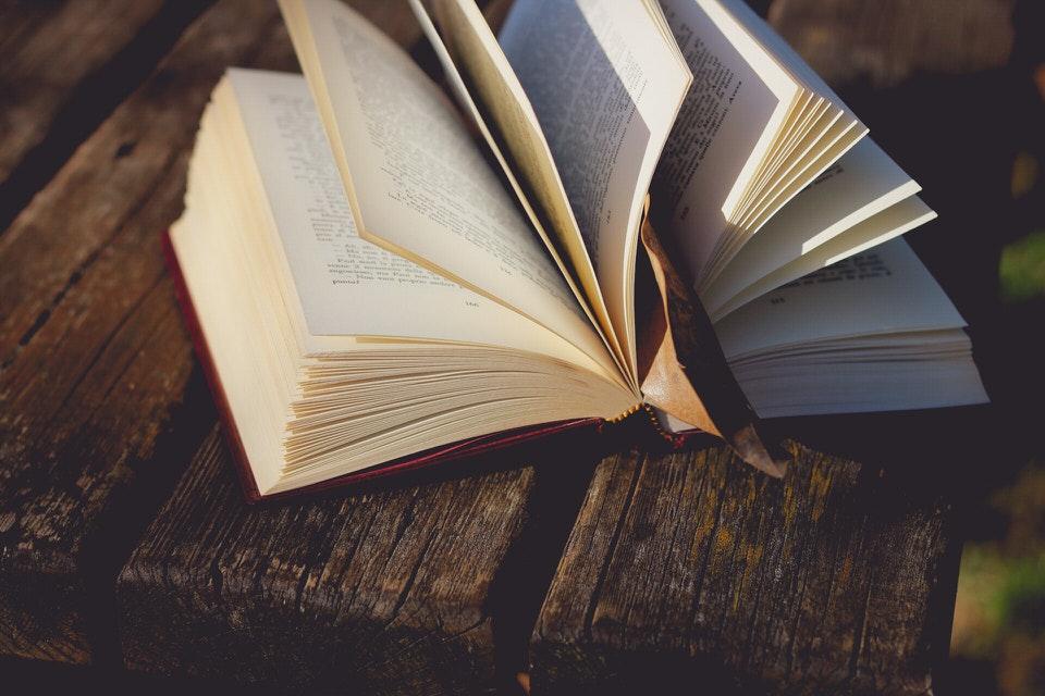 shun's article picture - books one