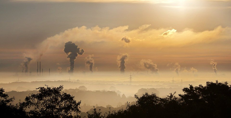 shun's article picture - smoke earth