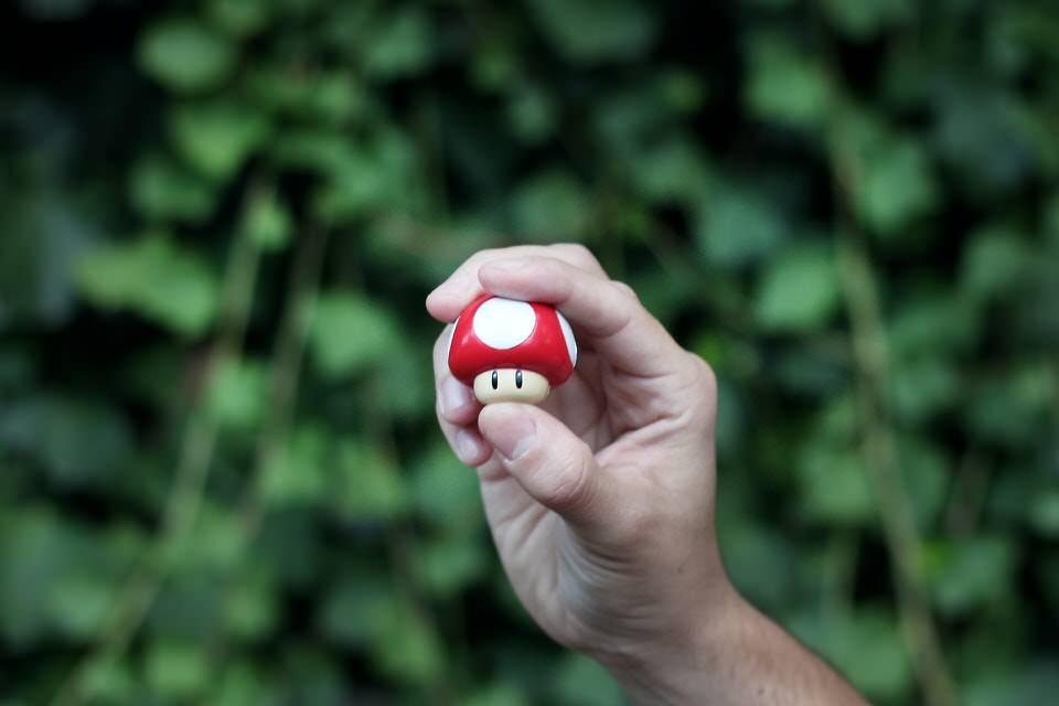shun's article picture - mario mushroom
