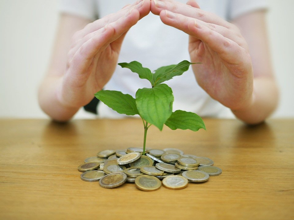 shun's article picture - money to leaf