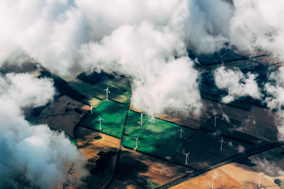 shun's article picture - Environmental destruction