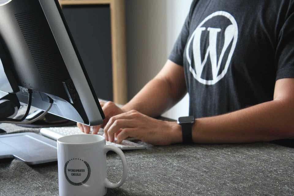 shun's article picture -  wordpress man