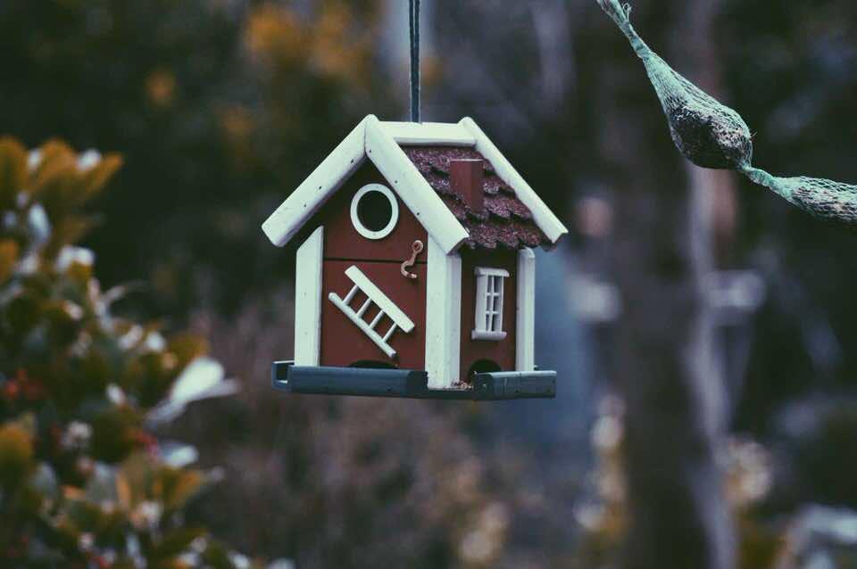 shun's article picture - mini house