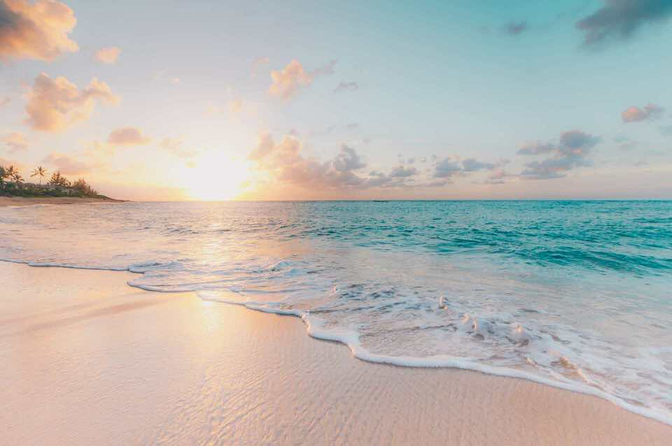shun's article picture - summer beach