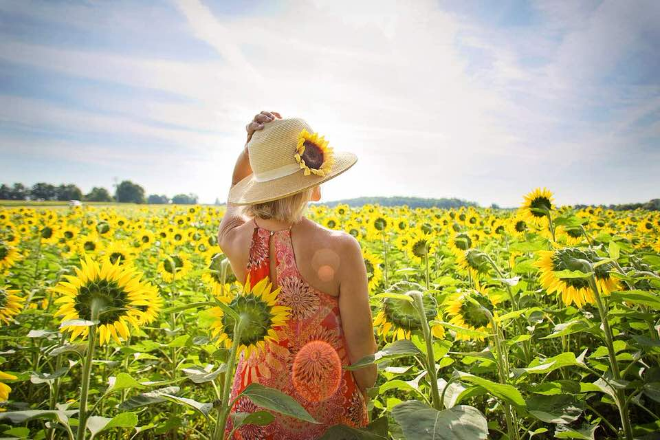shun's article picture - sunflower in the girl